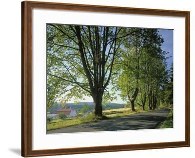 Crow Valley, Orcas Island, Washington, USA-Charles Gurche-Framed Photographic Print