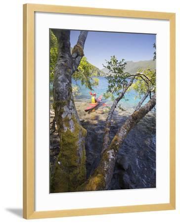 Sea Kayaker with Alder (Alnus Rubra), Crescent Lake, Washington, USA-Gary Luhm-Framed Photographic Print