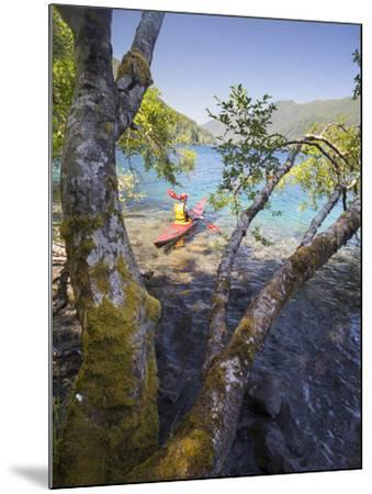 Sea Kayaker with Alder (Alnus Rubra), Crescent Lake, Washington, USA-Gary Luhm-Mounted Photographic Print