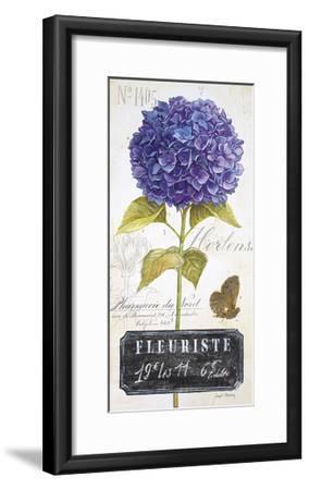Parisian Hydrangea-Angela Staehling-Framed Art Print