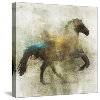 Lone Star 3-Ken Roko-Stretched Canvas Print