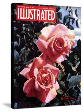 1950s UK Illustrated Magazine Cover--Stretched Canvas Print