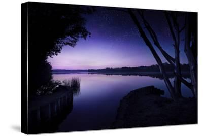 Tranquil Lake and Trees Against Starry Sky, Moscow, Russia--Stretched Canvas Print