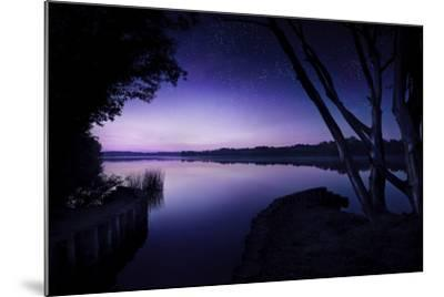 Tranquil Lake and Trees Against Starry Sky, Moscow, Russia--Mounted Photographic Print