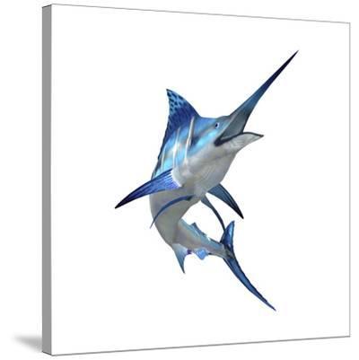 Blue Marli--Stretched Canvas Print
