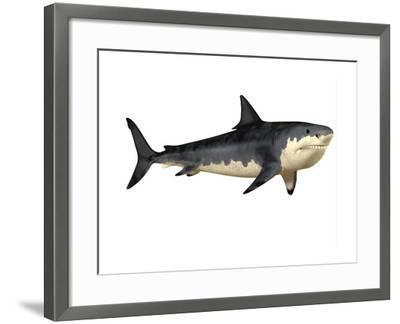 Megalodon Shark, an Enormous Predator from the Cenozoic Era--Framed Art Print