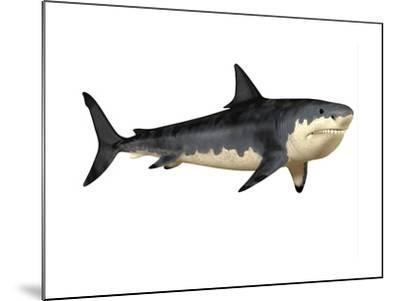 Megalodon Shark, an Enormous Predator from the Cenozoic Era--Mounted Art Print