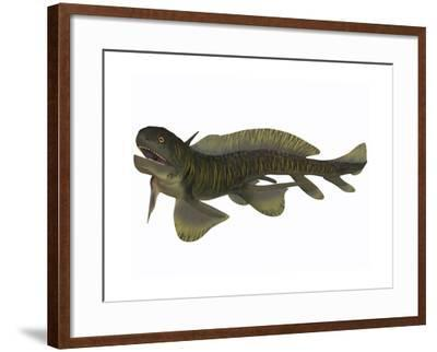 Xenacanthus, a Devonian Freshwater Shark--Framed Art Print
