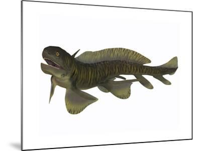 Xenacanthus, a Devonian Freshwater Shark--Mounted Art Print