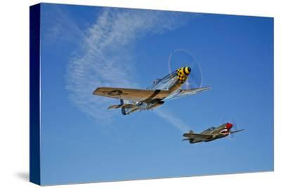 A P-51D Mustang Kimberly Kaye and a P-40E Warhawk in Flight--Stretched Canvas Print