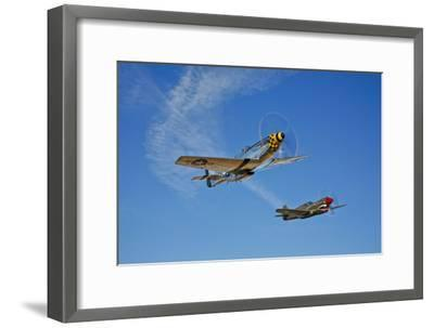 A P-51D Mustang Kimberly Kaye and a P-40E Warhawk in Flight--Framed Photographic Print