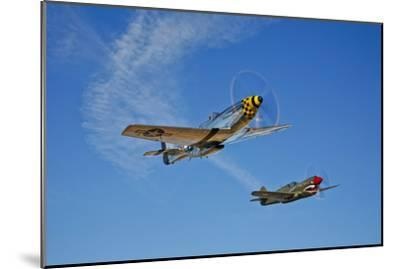 A P-51D Mustang Kimberly Kaye and a P-40E Warhawk in Flight--Mounted Photographic Print