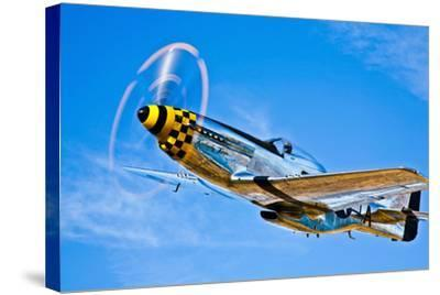 A North American P-51D Mustang in Flight Near Chino, California--Stretched Canvas Print
