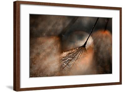 The Dance-Ursula Abresch-Framed Photographic Print