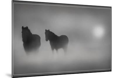 Monochrome Moods-Adrian Campfield-Mounted Photographic Print