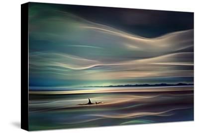 Orcas-Ursula Abresch-Stretched Canvas Print