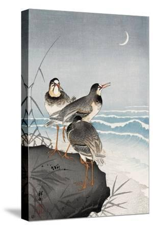 Three Plovers, Waves and Crescent Moon-Koson Ohara-Stretched Canvas Print