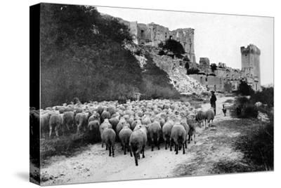 A Herd Passes in Front-Brothers Seeberger-Stretched Canvas Print