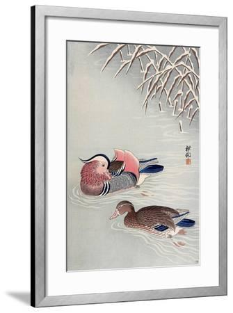 Mandarin Ducks in Snow-Koson Ohara-Framed Giclee Print