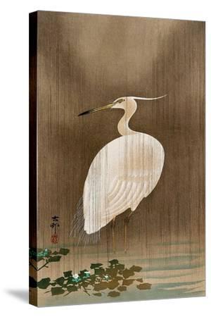Wading Egret-Koson Ohara-Stretched Canvas Print