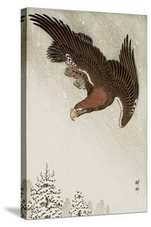 Eagle in Flight Against Snowy Sky-Koson Ohara-Stretched Canvas Print