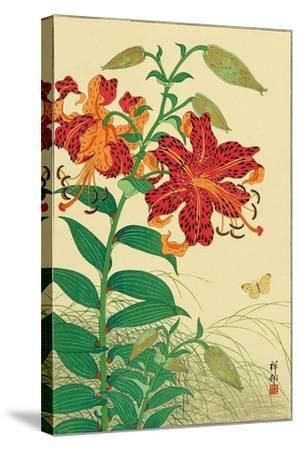 Tiger Lilies and Butterfly-Koson Ohara-Stretched Canvas Print