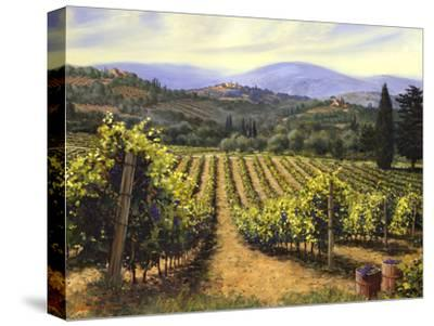 Tuscany Vines-Michael Swanson-Stretched Canvas Print