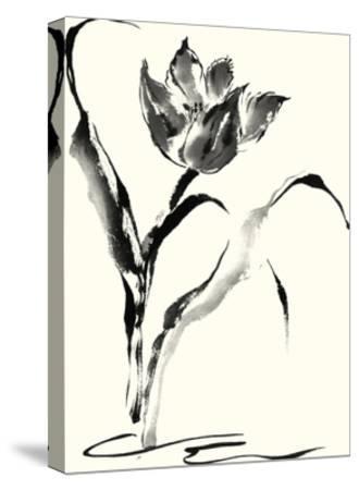 Studies in Ink - Tulip-Nan Rae-Stretched Canvas Print