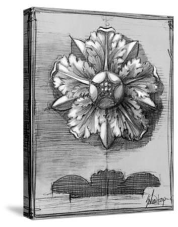 Custom Classical Sketch II-Ethan Harper-Stretched Canvas Print