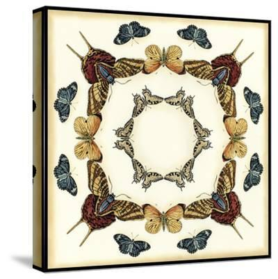 Butterfly Collector I-Chariklia Zarris-Stretched Canvas Print