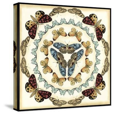 Butterfly Collector IV-Chariklia Zarris-Stretched Canvas Print