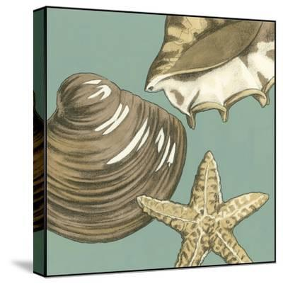 Small Shell Trio on Blue IV-Megan Meagher-Stretched Canvas Print