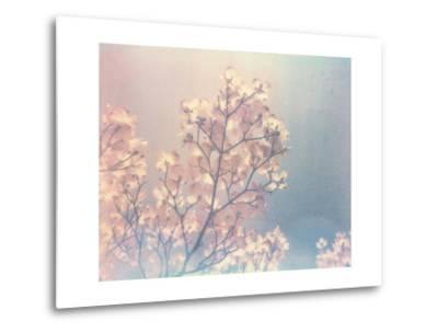 Flowering Dogwood I-Jason Johnson-Metal Print