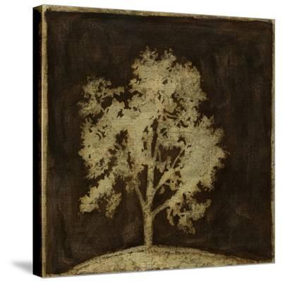 Gilded Tree III-Megan Meagher-Stretched Canvas Print