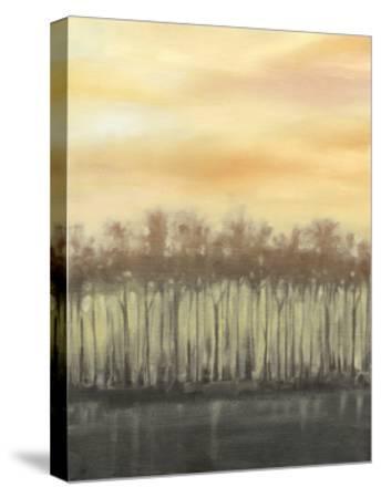Dusk in Autumn-Jennifer Goldberger-Stretched Canvas Print