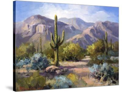 Catalina Mountain Foothills-Maxine Johnston-Stretched Canvas Print