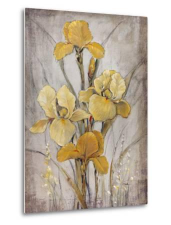 Golden Irises I-Tim O'toole-Metal Print