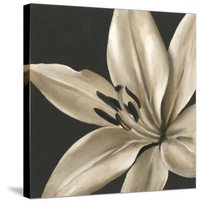 Classical Blooms III-Ethan Harper-Stretched Canvas Print