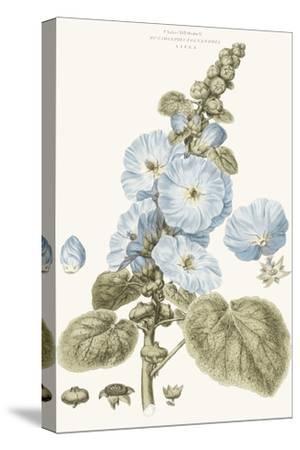 Bashful Blue Florals IV-John Miller-Stretched Canvas Print