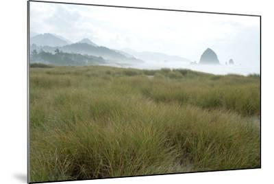 Fog at Cannon Beach, Oregon-Vickie Lewis-Mounted Photographic Print