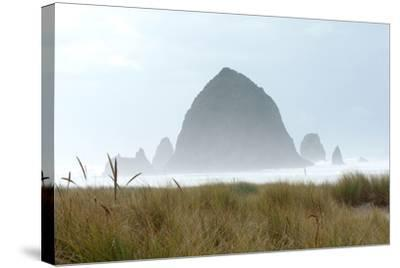 Fog at Cannon Beach, Oregon-Vickie Lewis-Stretched Canvas Print