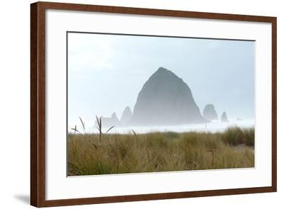 Fog at Cannon Beach, Oregon-Vickie Lewis-Framed Photographic Print