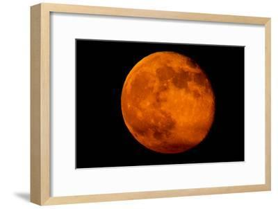 One Day after the 2013 Super Moon, the Brightest and Largest Full Moon of the Year-Kent Kobersteen-Framed Photographic Print