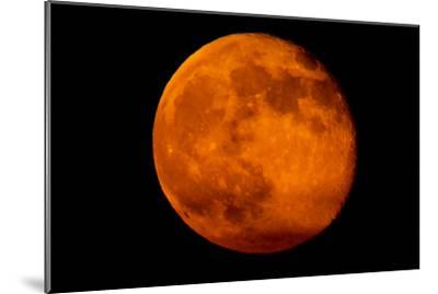 One Day after the 2013 Super Moon, the Brightest and Largest Full Moon of the Year-Kent Kobersteen-Mounted Photographic Print