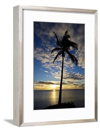 An Idyllic Palm Tree Silhouette Overlooking the Ocean at Sunset-Jason Edwards-Framed Photographic Print