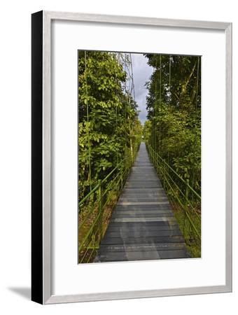 A Boardwalk Leads Through the Rain Forest at Costa Rica's La Selva Biological Station-Kike Calvo-Framed Premium Photographic Print