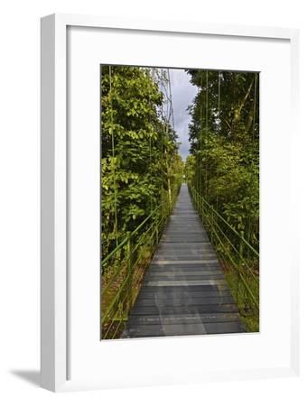 A Boardwalk Leads Through the Rain Forest at Costa Rica's La Selva Biological Station-Kike Calvo-Framed Photographic Print