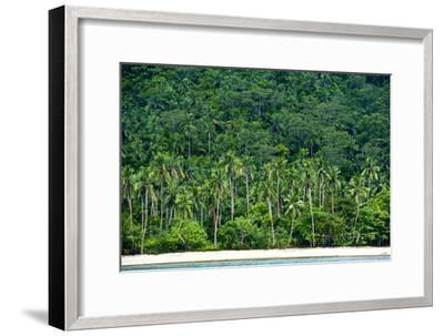 Tropical Rainforest and Palm Trees Line a Beach on a Deserted Island-Jason Edwards-Framed Photographic Print