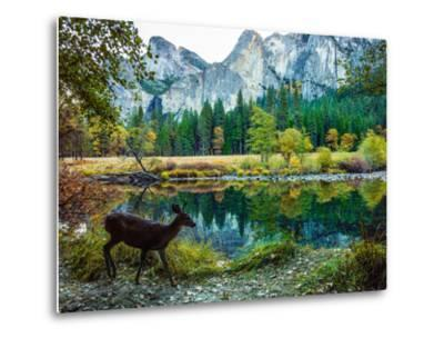 Colorful Trees, Rugged Mountains and a Browsing Deer in a Scenic Autumn Landscape-Babak Tafreshi-Metal Print