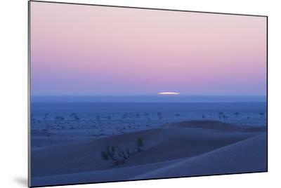 Sunrise over the Sand Dunes of the Rub' Al Khali, the Empty Quarter, Oman-Bill Hatcher-Mounted Photographic Print